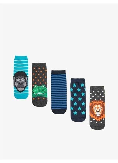 Koton Erkek Çocuk 5'li Desenli Pamuklu Çorap Seti Gri
